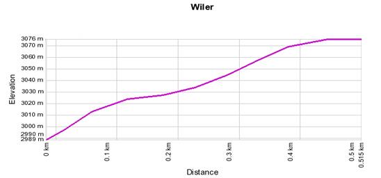 Höhenprofil: Wiler - Hockenhorn - Ausichtspunkt - Hockenhorn
