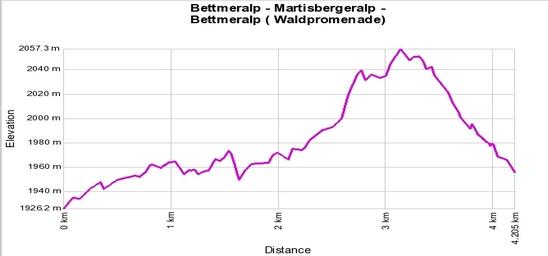 Höhenprofil: Bettmeralp - Martisbergeralp - Bettmeralp ( Waldpromenade)