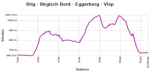 Höhenprofil: Brig - Birgisch Bord - Eggerberg - Visp